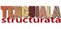 creare-logo-site-tencuiala-decorativa